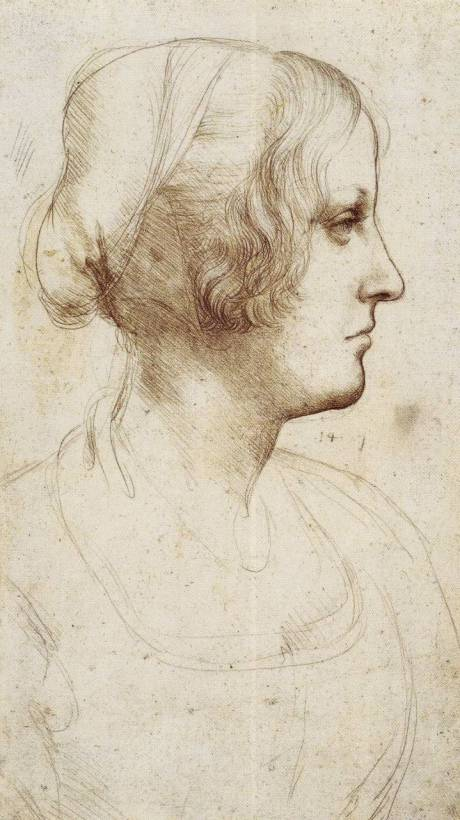Estudio de mujer joven de perfil(1485-1487)