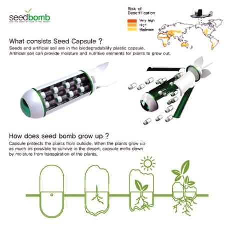 bombas-plantar-semillas